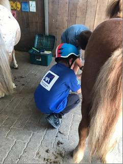 2019-07-08_a_PVM_Balade en poneys